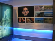 One of eight World Heritage Sites in South Africa, the Cradle of Humankind is widely recognised as the birthplace of mankind. It is a place of (ongoing) scientific discovery into existence, including 13 excavated sites identified within the area. World Heritage Sites, Fossils, South Africa, Discovery, Roots, Photo Wall, Frame, Picture Frame, Photograph
