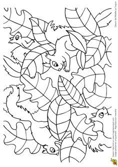 Coloriage cache cache feuilles libellules sur - Coloriage fleur britto ...