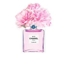 Coco Perfume Print from Watercolor Painting   Chanel Pink
