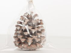 Pine Cone Fire Starters tutorial:  step-by-step instructions with photos in www.TheCraftingLibrary.com by RusticEscentuals. #DIY