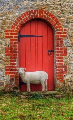 une porte et un mouton... àplacer dans Portes ou dans Laine de mon mouton?