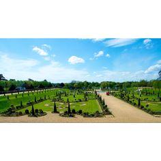 Hampton court garden. London UK