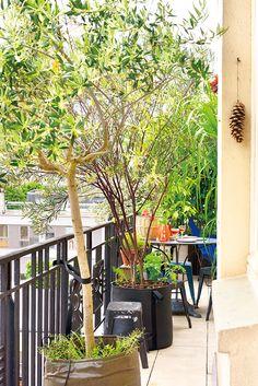 Des BACSAC sur un balcon filant parisien : pots géotextile et Asphalte 50L