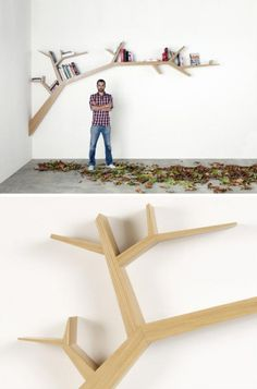 going out on a limb. the coolest shelf ive ever seen! i want it now!!