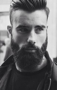 Handsome Scruffy Bearded Man.