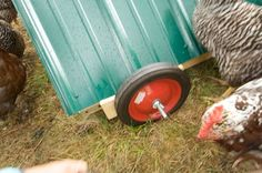 How to Design and Build a Movable Chicken Coop: Attach Wheels