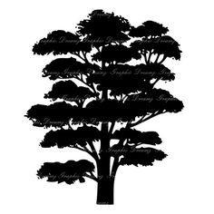 70% OFF SALE Oak Tree KM950 Digital Image by GraphicDreamz Family Tree