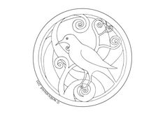 Tui Bird, Drawing Templates, Colorful Pictures, New Zealand, Symbols, Birds, Peace, Drawings, Christmas Stuff