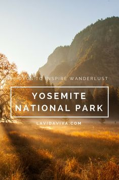 Yosemite is deservingly iconic and a must visit place in California. We've put together a collection of our best photos to inspire your next adventure!