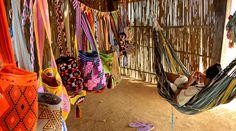 ¿Sabías que además de la mochila Wayúu existen otros productos tejidos por los indígenas de la región? Descubre algunos de ellos. Los indígenas Wayúu, en la Guajira, se han ganado el reconocimiento mundial por sus famosas mochilas susu, que en...