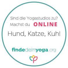 Die Yogastudios sind noch alle zu? Zeit, dir deinen Online Yogakurs zu suchen!  . Entweder bei Lehrern bei dir vor Ort - damit unterstützt du die Yogalehrer und Yogastudios deiner Stadt und kannst nach den Kontaktbeschränkungen gleich weiter vor Ort trainieren. Oder du probierst mal was ganz neues aus und schnupperst mal in einen neuen Yogastil rein.  . Bei uns stellen sich über 5.000 Yogalehrer*innen vor, darunter mehr als 100 mit Online-Kursen! Da ist bestimmt auch ein Kurs für dich… Yoga Kurse, Studio, Chart, Instagram, Yoga Teacher, Studios