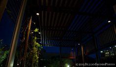 Lights_©2013JillianJacobsPhoto_LR.jpg | Jillian Jacobs Photography