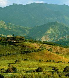 Voyage en Colombie : les 20 choses à voir dans le pays Trip To Colombia, Bella, Mountains, Nature, Travel, Paintings, The Visitors, Landscape, Naturaleza