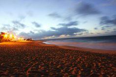 . . Sandy Beach . . Honolulu, Hawaii . .