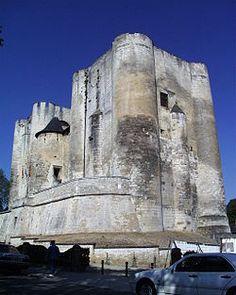 Le Donjon de Niort ou Château de Niort (le premier est le plus souvent utilisé aujourd'hui) est un château médiéval dans la ville française de Niort, dans le département des Deux-Sèvres. Il se compose de deux tours carrées, reliées par un bâtiment du 15ème siècle et domine la vallée de la Sèvre Niortaise. Les deux donjons sont la seule partie restante du château. Le château a été lancé par Henri II Plantagenêt et complété par Richard Cœur de Lion.