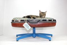 Dog or Cat Suitcase Bed... Made from recycled vintage products! $159.00