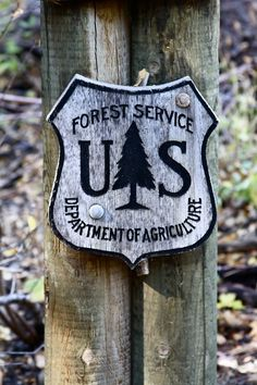 No reservations required. National forests rule.
