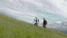 Genießen Sie den Sommer - auf weitläufigen Almen und Wanderwegen in der Region. Starten Sie direkt zu Fuß von der HOCHKÖNIGIN aus. Superior Hotel, Hotels, Aktiv, Mountains, Nature, Travel, Summer Vacations, Explore, Hiking