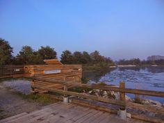 Cuneo e dintorni: Area per birdwatching nel Parco, ai laghetti di Te...
