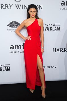 In Romona Keveza at the amFAR gala in New York.   - ELLE.com