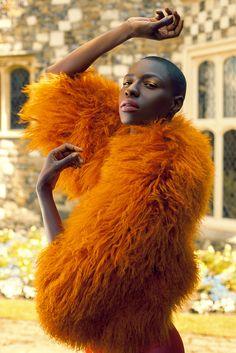 mode : Gabor Szantai Photographie - fourrure jaune safran, Afrique