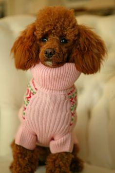 So cute in her pink sweater