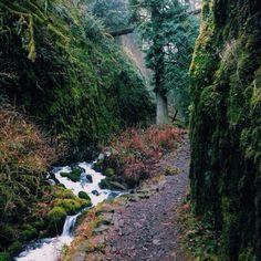 Wahkeena Gorge