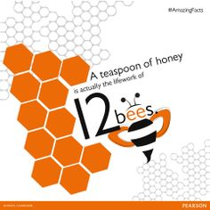 Did you know that a teaspoon of honey is actually the life work of 12 bees?
