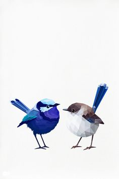 Blue Wren Couple Geometric illustration bird door tinykiwiprints