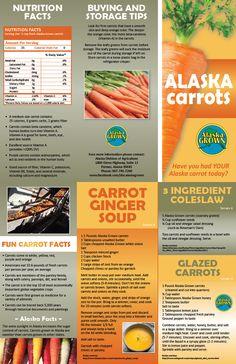 Brochure - Alaska Grown Carrots