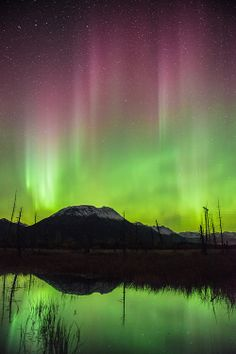Aurora borealis display over mountains and pond near Placer River, Chugach National Forest, Alaska, in early November.