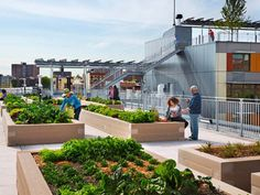 AIA/HUD Secretary Awards Recognize Three Outstanding Housing Projects