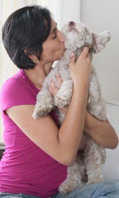 #Outubro Rosa Pet alerta para necessidade de prevenir câncer de mama em cadelas e gatas - Hoje em Dia: Hoje em Dia Outubro Rosa Pet alerta…