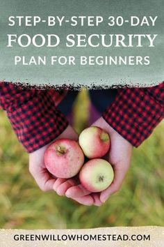 How To Build Food Security For Your Family In Less Than 30 Days - Green Willow Homestead #foodsecurity #beginnergardener #startgardening #victorygarden #foodsecurityplan #vegetablegarden #raisingchicks #chickenkeeping Organic Fertilizer, Organic Gardening, Day Old Chicks, Survival Food, Emergency Preparedness, Survival Tips, Building Raised Garden Beds, Permaculture Design