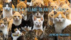 The cat island. An army of cats rules the remote Aoshima Island in southern Japan, curling up in abandoned houses or strutting about in a fishing village that is overrun with felines outnumbering humans six to one. Ehime, Kittens Playing, Cats And Kittens, International Cat Day, Gato Gif, Photo Chat, Cat Behavior, Cat People, Mundo Animal