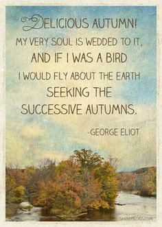 All seasons are wonderful; beautiful and have their own specific allures and hardships. Autumn however, combines a special vibrancy and bittersweetness that is unparrelled.