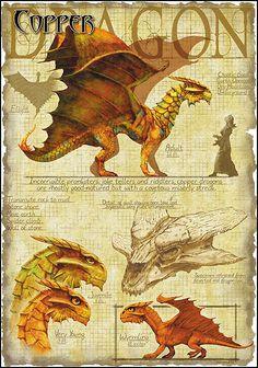 Copper Dragon by Richard Sardinha