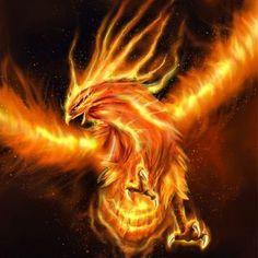 Phoenix Essence