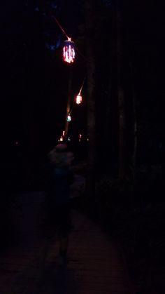 再び夜のボードウォーク1