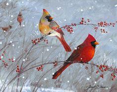 Cardenales del invierno