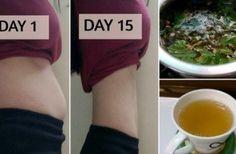 Hoe je 10 kg kwijtraakt in 10 dagen geen oefeningen en geen dieet!