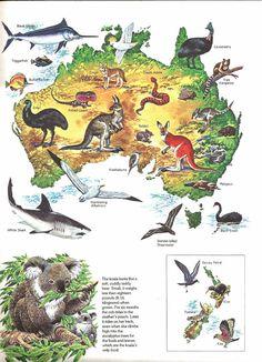 Australia Map, Geography, Religion, Animals Planet, History, Pets, Friends, School, Travel