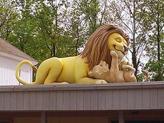 The Lion on the Roof