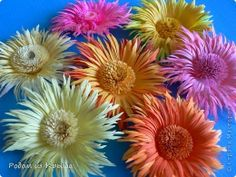 Chrysanthemum. Flowers made of paper.