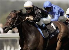 The great mare Ouija Board winning the Prince of Wales Stake