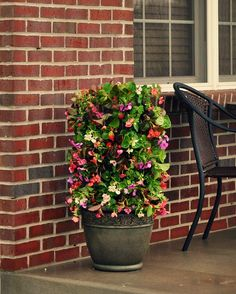 Spring Gardening Projects that Bloom All Summer Long #DigIn