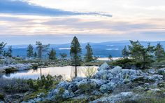 Explore markus.kiili's photos on Flickr. markus.kiili has uploaded 675 photos to… > Midnight sun, Lapland FI