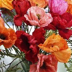 http://www.paneamoreecreativita.it/blog/2013/04/i-fiori-di-carta-di-rosanna-de-la-quinta-stagione/