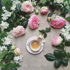 Coffee Time with the first roses from the garden and  the Marvelous seringat ☕️ Good morning my dear followers
