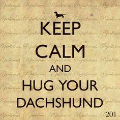 Hug your Dachshund!